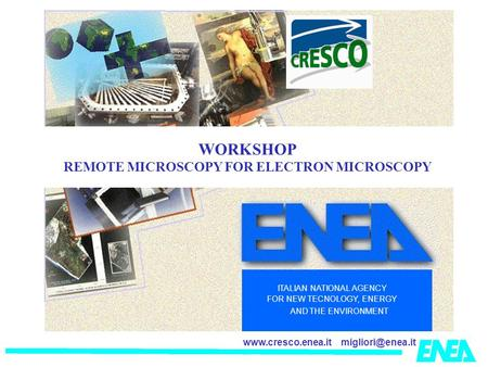 ITALIAN NATIONAL AGENCY FOR NEW TECNOLOGY, ENERGY AND THE ENVIRONMENT WORKSHOP REMOTE MICROSCOPY FOR ELECTRON MICROSCOPY.