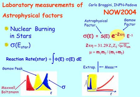 Carlo Broggini, INFN-Padova Nuclear Burning in Stars (E star ) ( E ) = S(E) e –2 E -1 2 cm m m m m Astrophysical Factor Gamow Factor Reaction Rate(star)