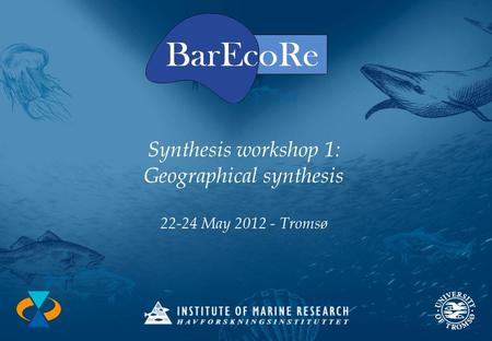 Synthesis workshop 1: Geographical synthesis 22-24 May 2012 - Tromsø