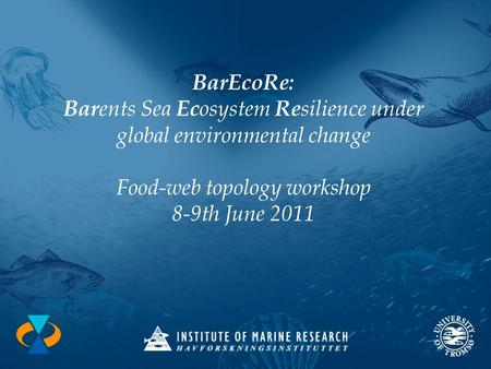 BarEcoRe: Bar ents Sea Ec osystem Re silience under global environmental change Food-web topology workshop 8-9th June 2011.
