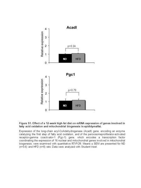 Pgc1 p=0.24 p=0.79 Figure S1. Effect of a 12-week high-fat diet on mRNA expression of genes involved in fatty acid oxidation and mitochondrial biogenesis.