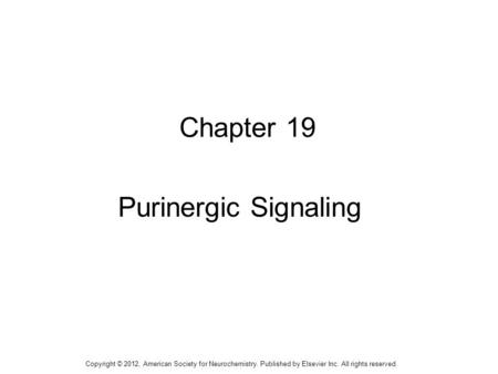 1 Chapter 19 Purinergic Signaling Copyright © 2012, American Society for Neurochemistry. Published by Elsevier Inc. All rights reserved.