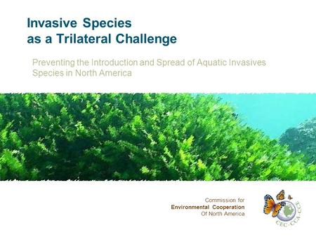 Invasive Species as a Trilateral Challenge Preventing the Introduction and Spread of Aquatic Invasives Species in North America Commission for Environmental.