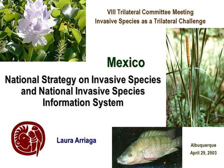 National Strategy on Invasive Species and National Invasive Species Information System VIII Trilateral Committee Meeting Invasive Species as a Trilateral.