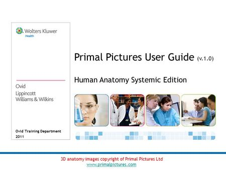 Ovid Training Department 2011 Primal Pictures User Guide (v.1.0) 3D anatomy images copyright of Primal Pictures Ltd www.primalpictures.com Human Anatomy.