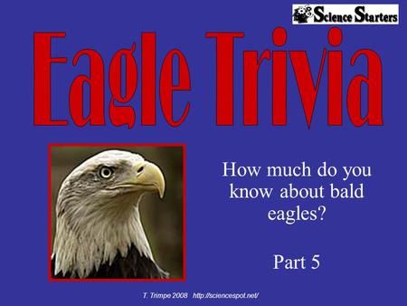 How much do you know about bald eagles? Part 5 T. Trimpe 2008