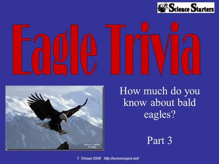 How much do you know about bald eagles? Part 3 T. Trimpe 2008