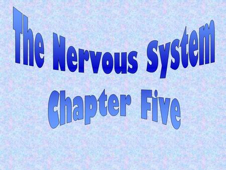 The Nervous System Chapter Five.