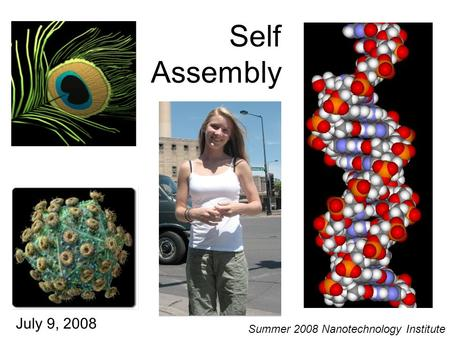 Self Assembly July 9, 2008 Summer 2008 Nanotechnology Institute.