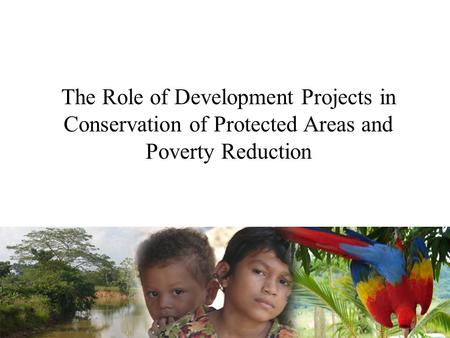 The Role of Development Projects in Conservation of Protected Areas and Poverty Reduction.