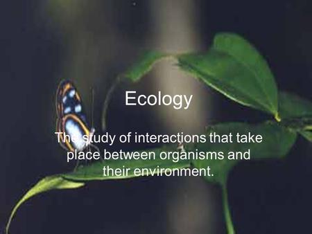 Ecology The study of interactions that take place between organisms and their environment.