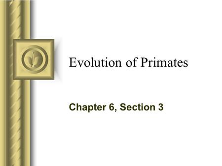 Evolution of Primates Chapter 6, Section 3.