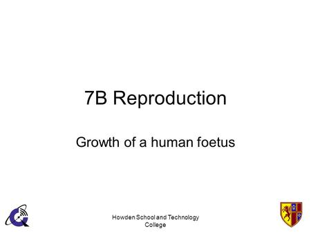 Howden School and Technology College 7B Reproduction Growth of a human foetus.