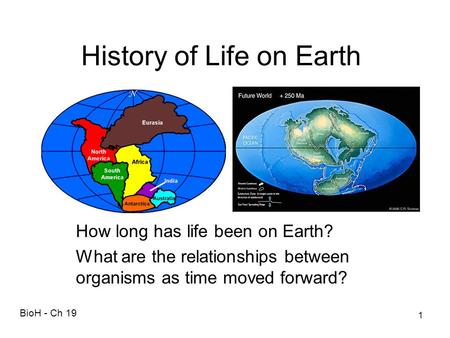History of Life on Earth How long has life been on Earth? What are the relationships between organisms as time moved forward? BioH - Ch 19 1.