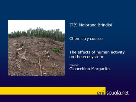 ITIS Majorana Brindisi Chemistry course The effects of human activity on the ecosystem Teacher Gioacchino Margarito.