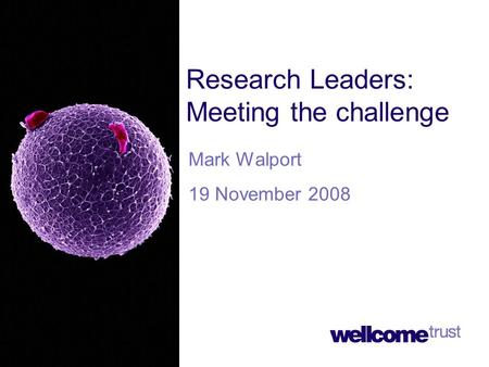 Research Leaders: Meeting the challenge Mark Walport 19 November 2008.