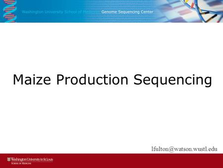 Maize Production Sequencing