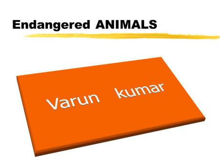 Endangered ANIMALS. Mammals Birds Insects Fish Endangered Animals.