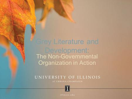 Grey Literature and Development: The Non-Governmental Organization in Action.
