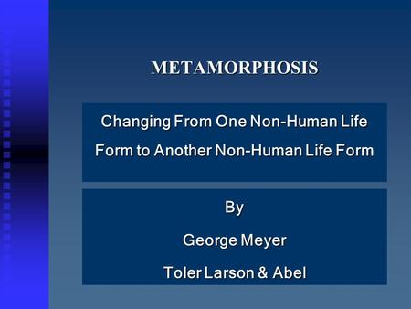 METAMORPHOSISMETAMORPHOSIS Changing From One Non-Human Life Form to Another Non-Human Life Form By George Meyer Toler Larson & Abel.