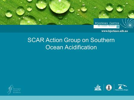 SCAR Action Group on Southern Ocean Acidification www.bjerknes.uib.no.