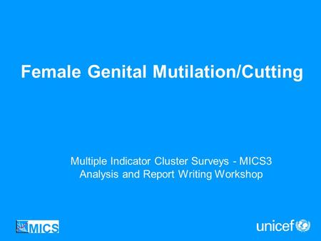 Female Genital Mutilation/Cutting Multiple Indicator Cluster Surveys - MICS3 Analysis and Report Writing Workshop.