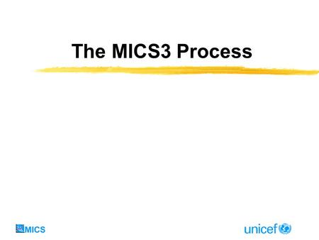 The MICS3 Process. By now we have decided to do a MICS3 We have answered these questions: Why is the survey being done? How will the survey results be.