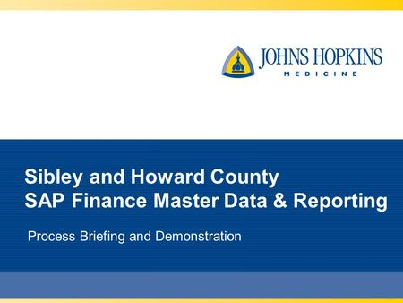 Sibley and Howard County SAP Finance Master Data & Reporting