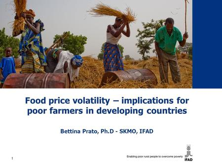 Food price volatility – implications for poor farmers in developing countries Bettina Prato, Ph.D - SKMO, IFAD 1.