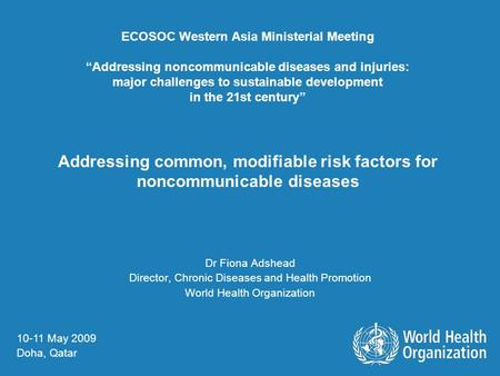 ECOSOC Western Asia Ministerial Meeting Addressing noncommunicable diseases and injuries: major challenges to sustainable development in the 21st century.