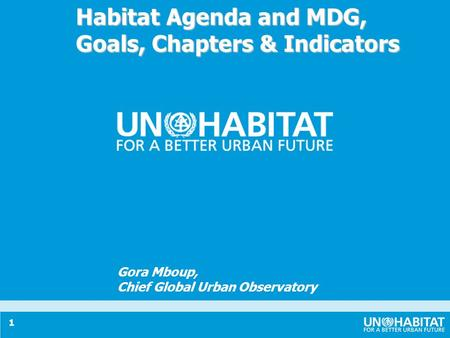 1 Habitat Agenda and MDG, Goals, Chapters & Indicators Gora Mboup, Chief Global Urban Observatory.