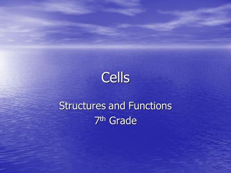 Structures and Functions 7th Grade