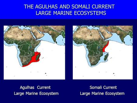 THE AGULHAS AND SOMALI CURRENT LARGE MARINE ECOSYSTEMS THE AGULHAS AND SOMALI CURRENT LARGE MARINE ECOSYSTEMS Agulhas Current Somali Current Large Marine.