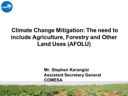 Climate Change Mitigation: The need to include Agriculture, Forestry and Other Land Uses (AFOLU) Mr. Stephen Karangizi Assistant Secretary General COMESA.