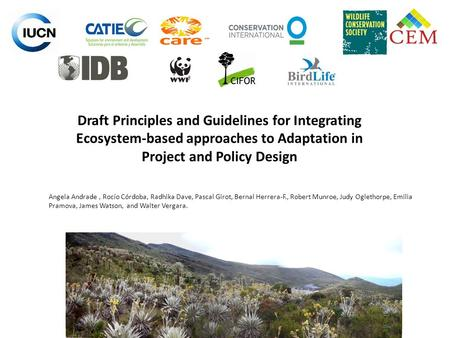 Draft Principles and Guidelines for Integrating Ecosystem-based approaches to Adaptation in Project and Policy Design Angela Andrade , Rocío Córdoba, Radhika.