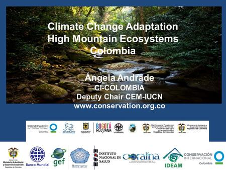 Climate Change Adaptation High Mountain Ecosystems Colombia Ángela Andrade CI-COLOMBIA Deputy Chair CEM-IUCN www.conservation.org.co.