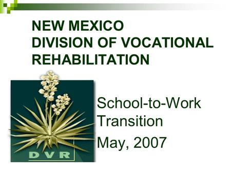 NEW MEXICO DIVISION OF VOCATIONAL REHABILITATION School-to-Work Transition May, 2007.