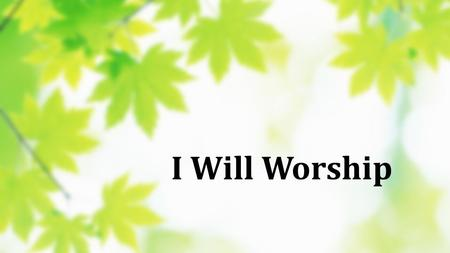 I Will Worship. I will worship, With all of my heart I will praise you, With all of my strength I will seek you, All of my days I will follow, Follow.