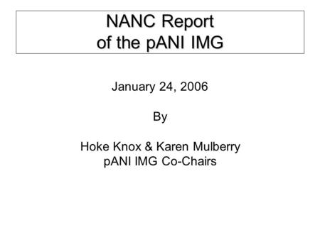 NANC Report of the pANI IMG January 24, 2006 By Hoke Knox & Karen Mulberry pANI IMG Co-Chairs.