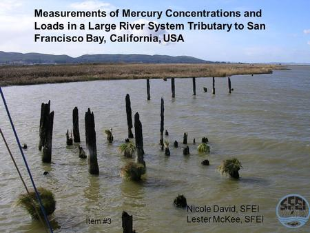 Measurements of Mercury Concentrations and Loads in a Large River System Tributary to San Francisco Bay, California, USA Nicole David, SFEI Lester McKee,