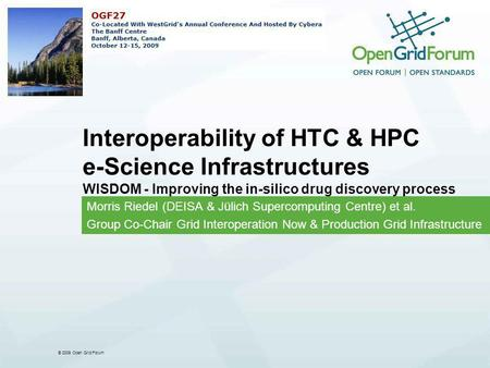 © 2009 Open Grid Forum Interoperability of HTC & HPC e-Science Infrastructures WISDOM - Improving the in-silico drug discovery process Morris Riedel (DEISA.