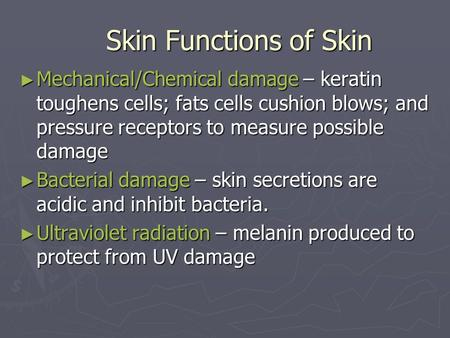 Skin Functions of Skin Mechanical/Chemical damage – keratin toughens cells; fats cells cushion blows; and pressure receptors to measure possible damage.