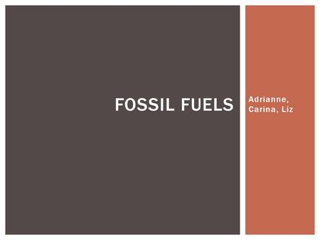 Adrianne, Carina, Liz FOSSIL FUELS. Oil Coal Natural gases WHAT IS A FOSSIL FUEL?