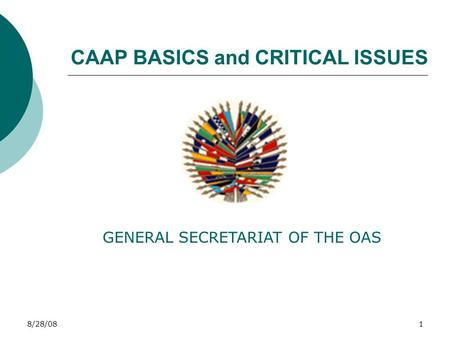 8/28/081 CAAP BASICS and CRITICAL ISSUES GENERAL SECRETARIAT OF THE OAS.