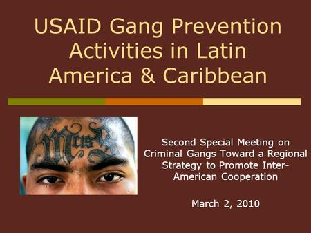 Second Special Meeting on Criminal Gangs Toward a Regional Strategy to Promote Inter- American Cooperation March 2, 2010 USAID Gang Prevention Activities.