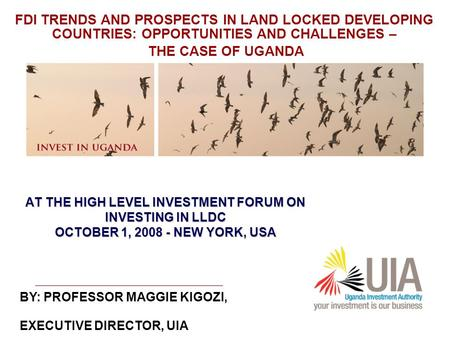 AT THE HIGH LEVEL INVESTMENT FORUM ON INVESTING IN LLDC OCTOBER 1, 2008 - NEW YORK, USA BY: PROFESSOR MAGGIE KIGOZI, EXECUTIVE DIRECTOR, UIA FDI TRENDS.