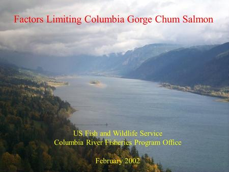Factors Limiting Columbia Gorge Chum Salmon US Fish and Wildlife Service Columbia River Fisheries Program Office February 2002.