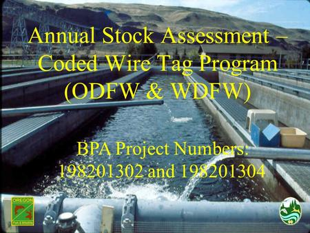 Annual Stock Assessment – Coded Wire Tag Program (ODFW & WDFW) BPA Project Numbers: 198201302 and 198201304.