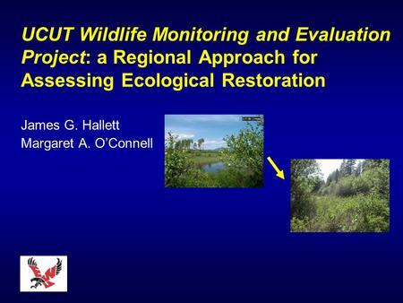 UCUT Wildlife Monitoring and Evaluation Project: a Regional Approach for Assessing Ecological Restoration James G. Hallett Margaret A. OConnell.