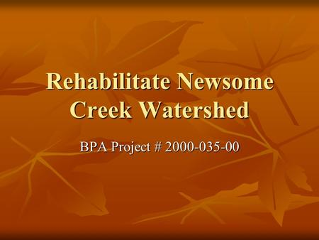 Rehabilitate Newsome Creek Watershed BPA Project # 2000-035-00.